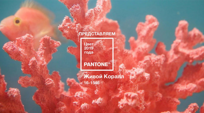 Назван главный цвет 2019 года — Living Coral