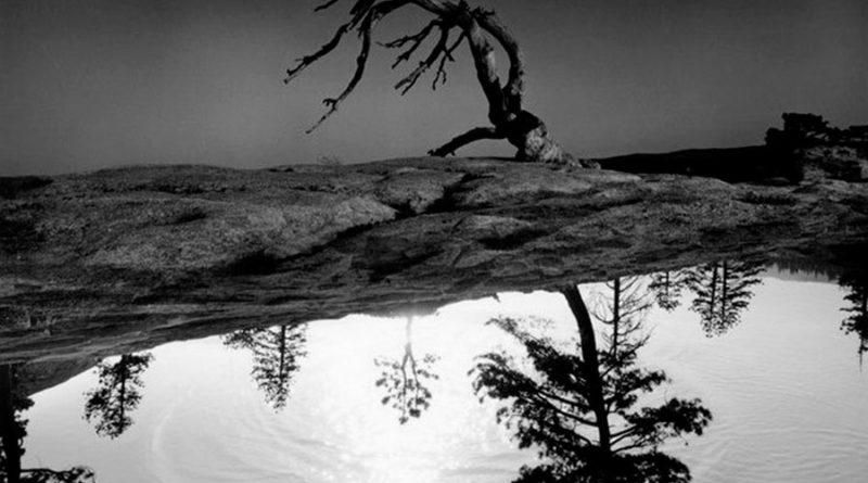 Джерри Уэлсманн (Jerry Uelsmann) – фотограф сюрреалист