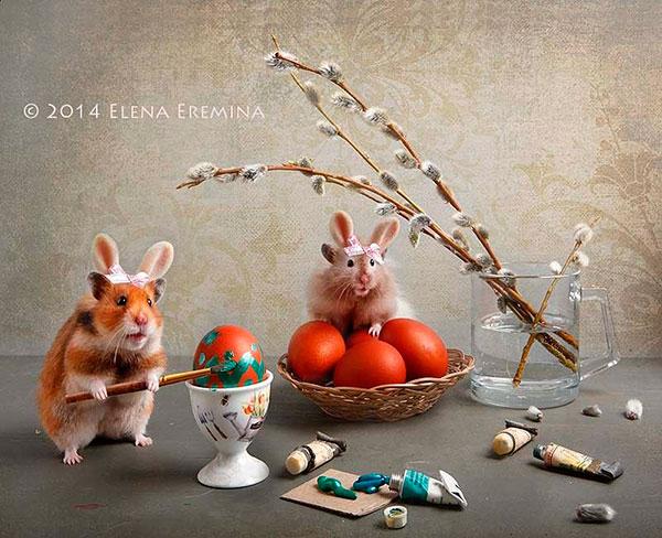 Елена Еремина (Elena Eremina) - фотохудожник