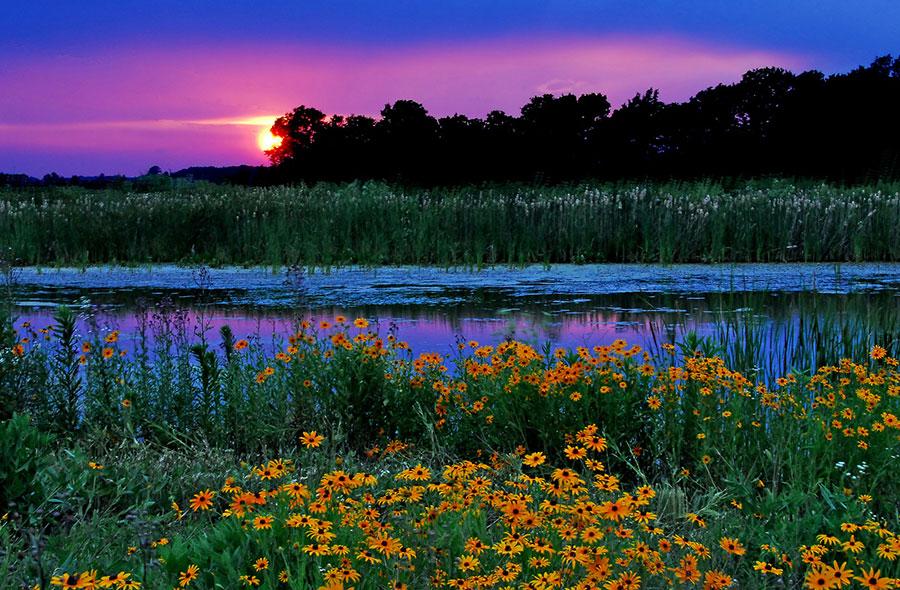 Стив Уолл (Steve Wall) – фотограф (пейзаж и дикая природа)