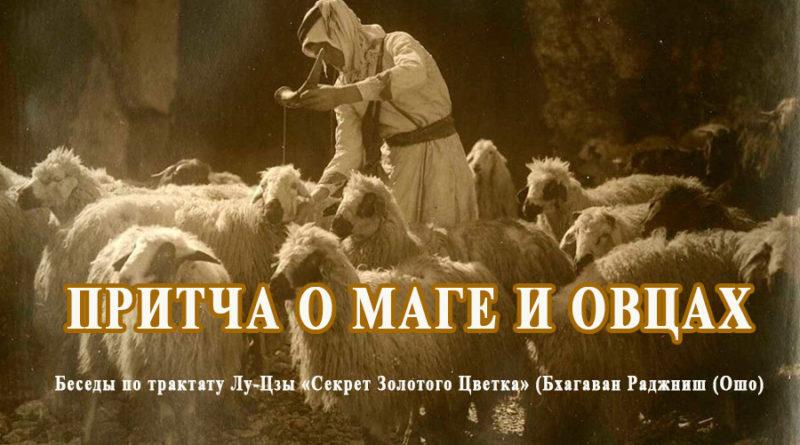 Притча о маге и овцах (Ошо)