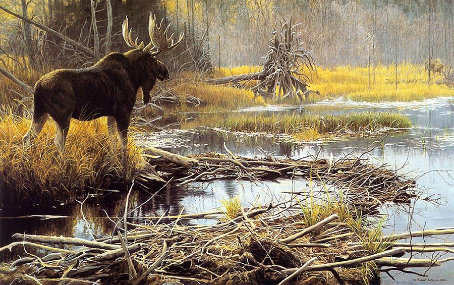Роберт Бейтмен (Robert Bateman) – художник