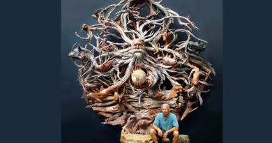 Пол Баликер (PaulBaliker) – скульптор, DRIFTWOOD